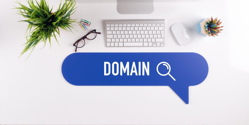 Search for domain